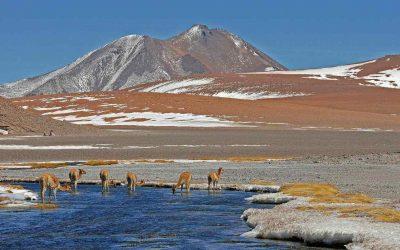 Tour del Cile: Dal tropico del Cancro all'Antartico