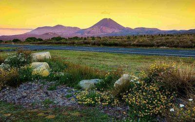 Novità: Nuova Zelanda alla scoperta del nord
